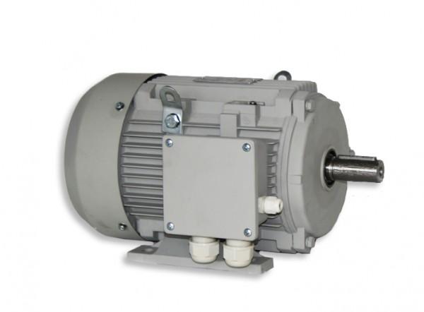 Elektromotor 5,5 für RS + RSF 5,5